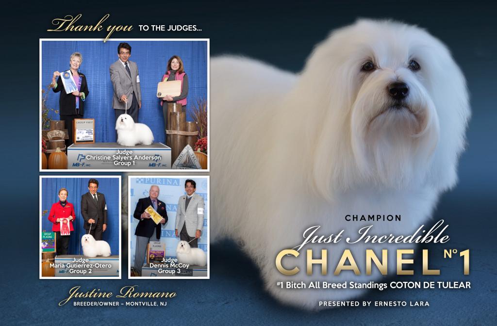 Chanelgroupad1202ad